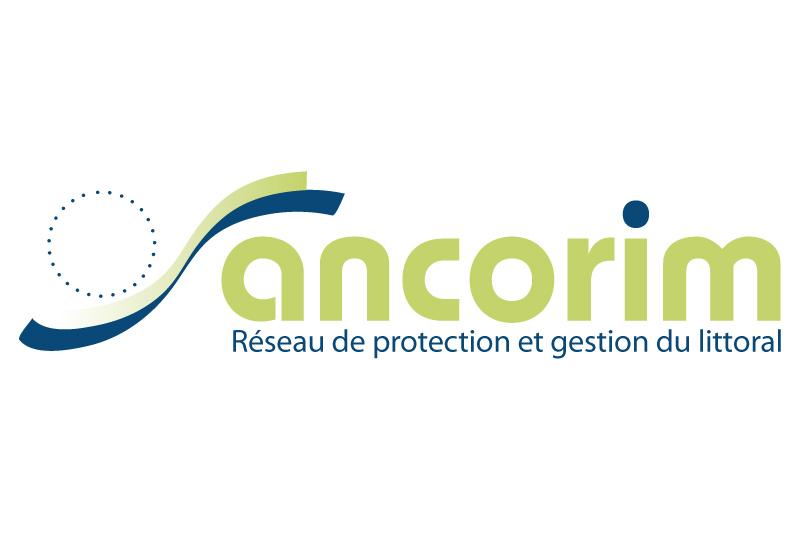 proposition pour le logotype du projet ANCORIM