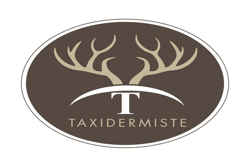 logo-taxidermiste-4